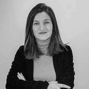 Brikena Xhomaqi, Direktorin der Lifelong Learning Platform