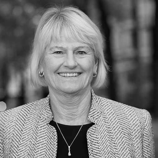 Pam Fredman, Presidentin der International Association of Universities
